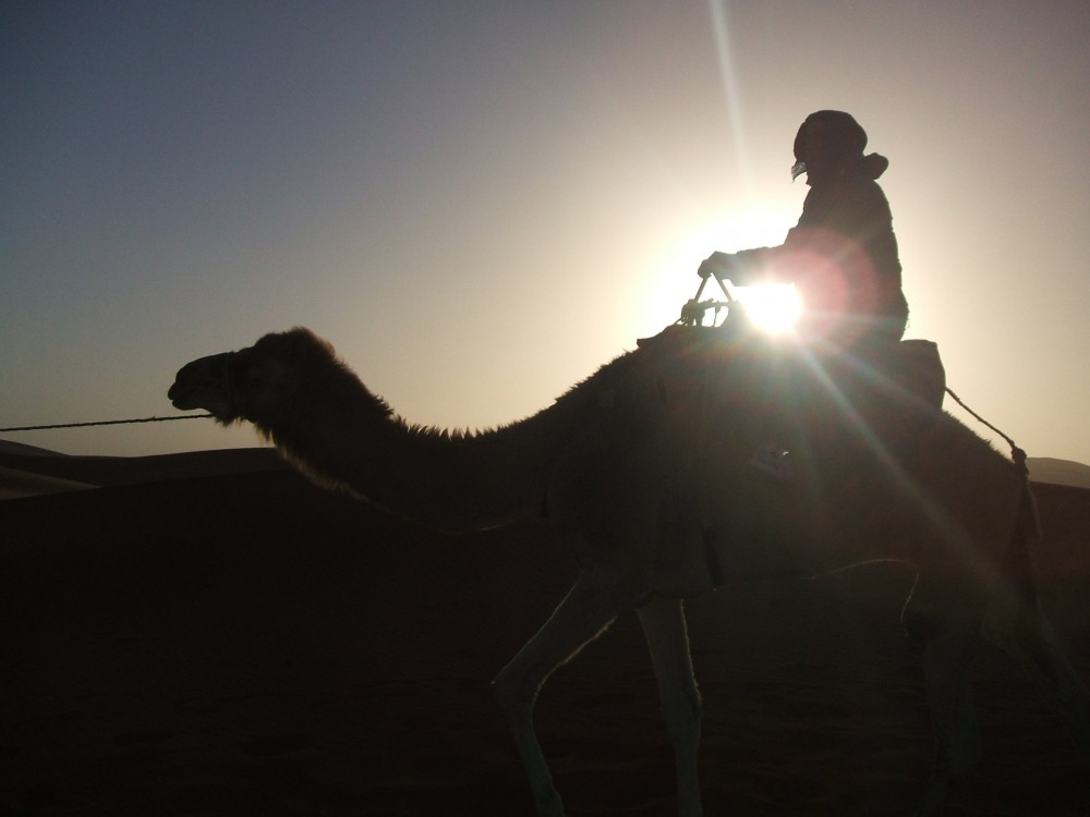 Riding a camel in the Sahara Desert