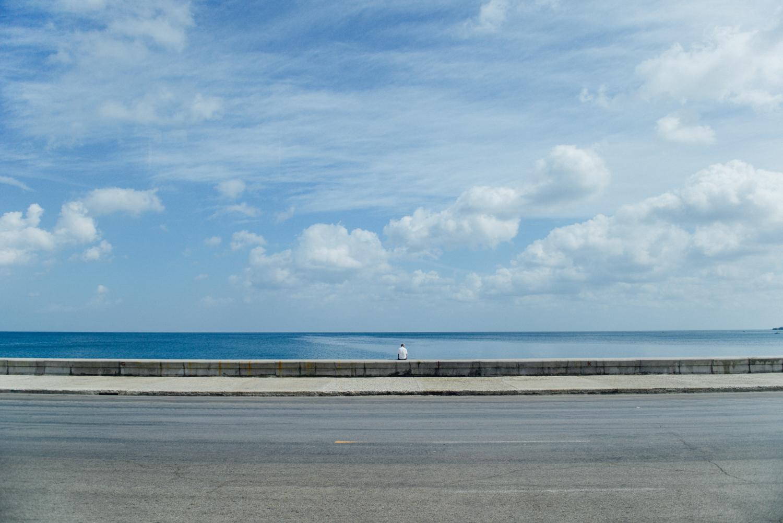 Cuban Coast Life